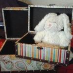 bernie-in-the-box